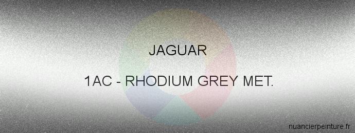 Peinture Jaguar 1AC Rhodium Silver Met.