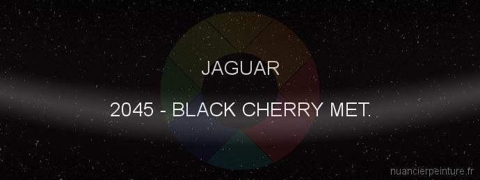 Peinture Jaguar 2045 Black Cherry Met.