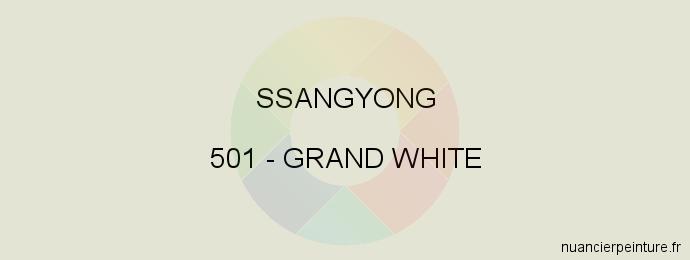 Peinture Ssangyong 501 Grand White